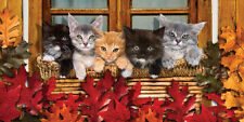 "Kitty Cats Towel Kittens on Window Beach Pool Souvenir 30""x60"""