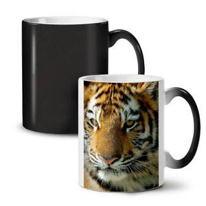 Tiger Photo Nature Animal NEW Colour Changing Tea Coffee Mug 11 oz | Wellcoda
