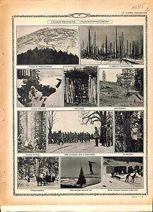 Alsace-Bataille-du-Hartmannswillerkopf-Poilus-Artillerie-Infanterie-1915-WWI