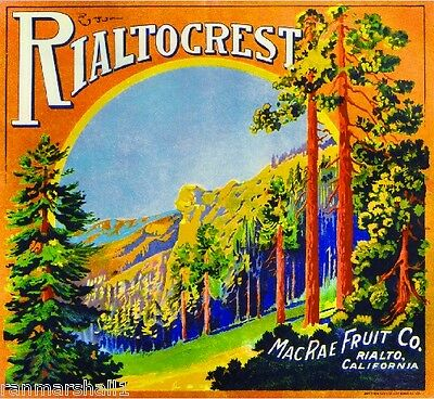 Rialto San Bernardino Wheeler/'s Fancy Orange Citrus Fruit Crate Label Art Print