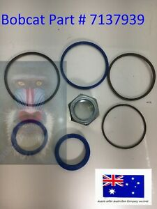 7137939 Hydraulic Cylinder Seal Kit for Fits Bobcat A300 S250 S300