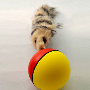Rolling-Ball-Pet-Dog-Cat-Weasel-Motorized-Appears-Jump-Mouse-Alive-Toy-8x21cm