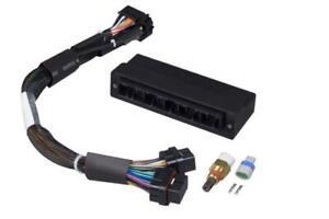 Haltech Elite 1000 1500 ECU Mazda Miata MX5 NB USDM P&P Adaptor Loom ONLY