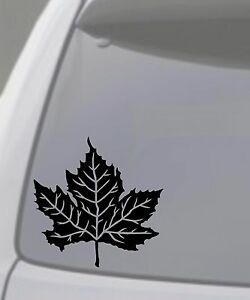 MAPLE LEAF Vinyl Decal Sticker Car Window Wall Bumper Tree Canada - Vinyl decal stickers canada