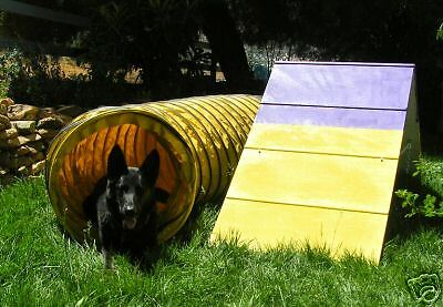 Dog Agility Mini A-Frame & 15' tunnel Equipment Combo