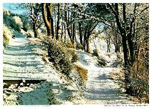 Postcard-MOORAGHS-BROOGHS-IN-WINTER-Ref-D2