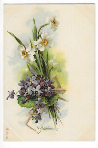 Illustration Signed Catharina Klein Floral Flowers
