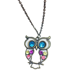Womens long chain necklace with owl pendant