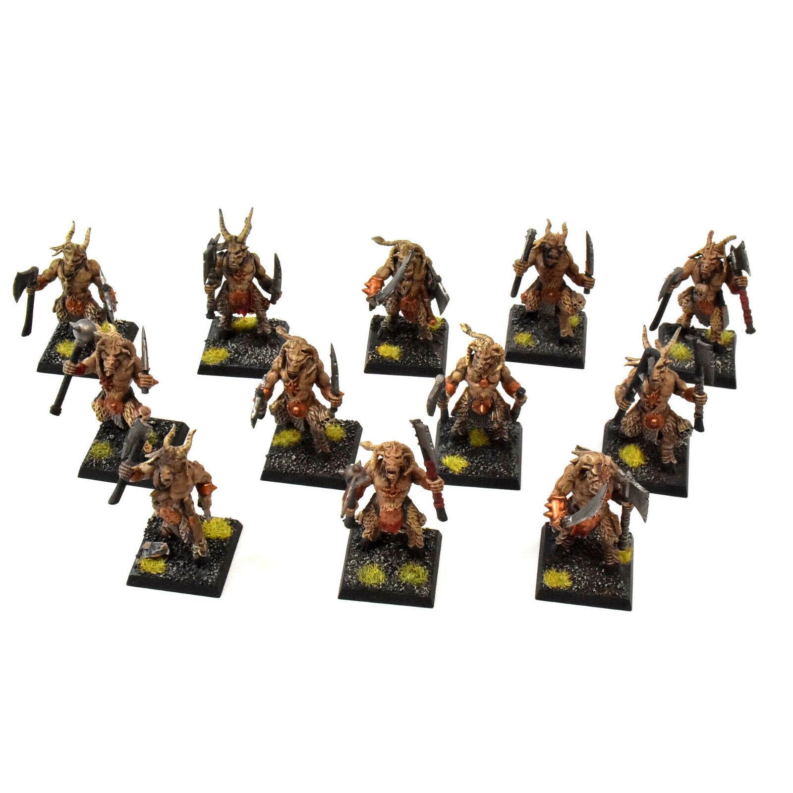 SPIAGGI DI CHAOS 12 Gors  2 WELL PAINTED Warhammer fantasyc Beastmen Gor