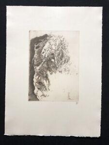 Horst Janssen, anche Portrait elegisch, acquaforte, 1982, firmato a mano