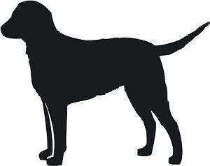 CURLY-COAT-RETRIEVER-DOG-DECAL-STICKER-CAR-VAN-VINYL-SILHOUETTE-GROOMING-SIGN