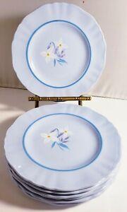 J-amp-G-MEAKIN-WHITE-ALPINE-BLUE-BREAD-PLATES-6-034-SET-OF-7-HANDPAINTED-FLOWERS-VTG