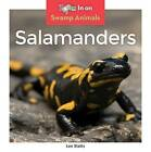 Salamanders by Leo Statts (Hardback, 2016)