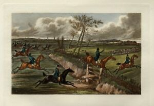 FOX HUNTING HORSES JUMPING THE DITCH AND FENCE SPORTSMAN DOGS FOXHOUNDS WHIP
