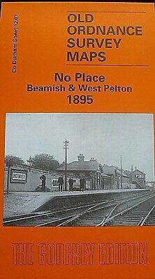 OLD ORDNANCE SURVEY MAP NO PLACE BEAMISH WEST PELTON 1895 HIGH HANDENHOLD