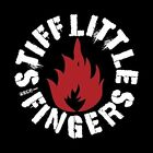 Stiff Little Fingers - Fly The Flags Live at Brixton Academy 1991