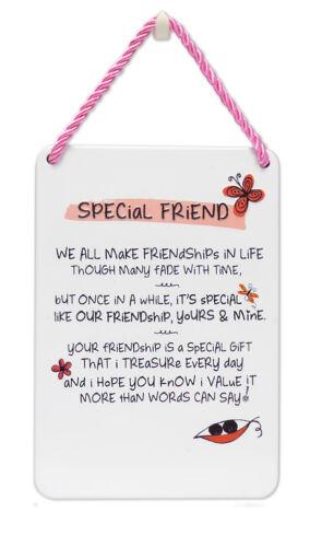 Amie Inspiré mots Tin Hanging plaque Sentimental Cadeau Gamme