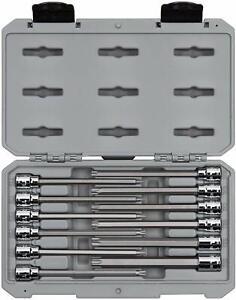 Torx Star Bit SOCKET Set 1//4 Drive 3//8 Drive /& 1//2 Drive 12 Piece T10 /> T60