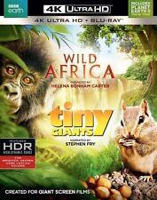 WILD AFRICA /TINY GIANTS  (4K ULTRA HD) - Blu Ray -  Region free