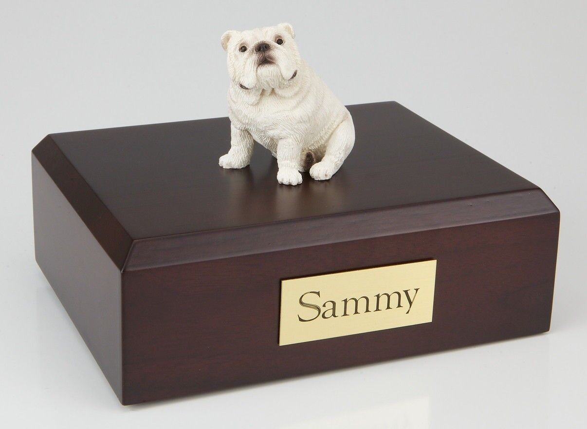 Bulldog, bianca Pet Funeral Cremation Cremation Cremation Urn Avail in 3 Different Colores & 4 Dimensiones 01d891