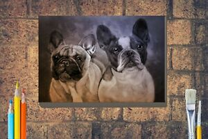 French-Bulldog-Art-Box-Canvas-A4-A3-A2-A1-Birthday-Xmas-Mothers-Day-Gift