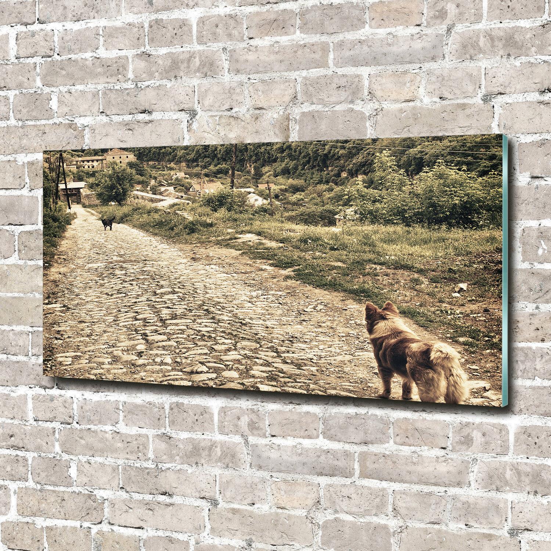 Cuadros de pa rojo  cristal de pantalla de cristal  impresión sobre vidrio animales decorativos 140 x 70 dos perros colina 22ad13