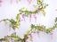 thumbnail 10 - 4PCS-Artificial-Flowers-Silk-Wisteria-Ivy-Vine-Wedding-Arch-Floral-Home-Decor