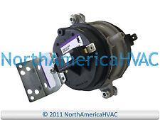 100087-06 Lennox 23W26 Low Pressure Switch 40 PSI