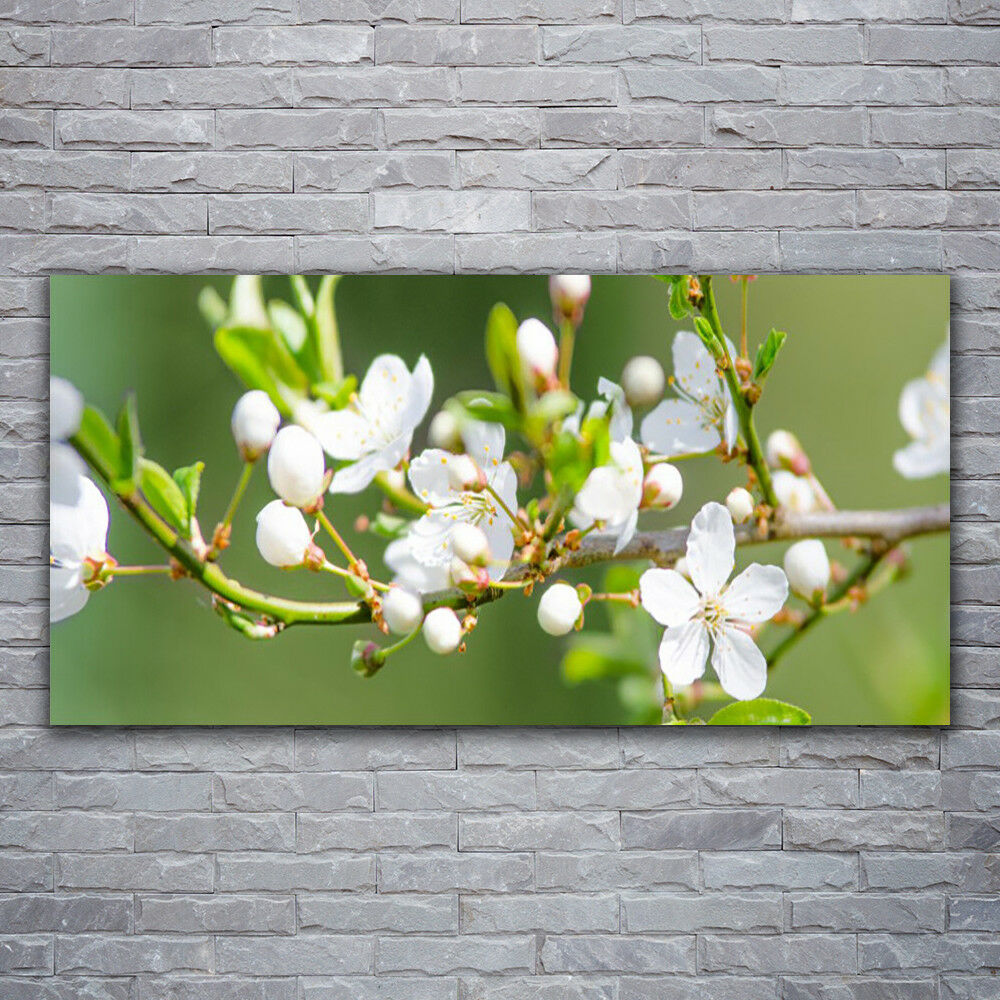 Canvas print Wall art on 120x60 Image Picture Branches Flowers Floral