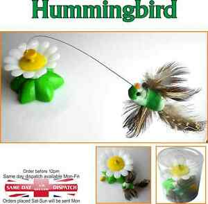 Bird-Toy-Electric-Rotating-Hummingbird-Steel-Wire-Teaser-Pet-Toy