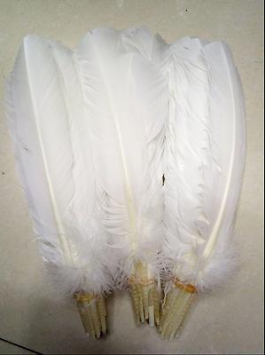 8-30 cm 10-100pcs Wholesale unique wild Turkey tail feathers  3-12 inches
