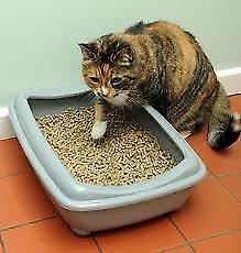 Wood Based Cat Litter 15 litre bag Ultra Absorbent Pellets Fresh Pine Wood Base