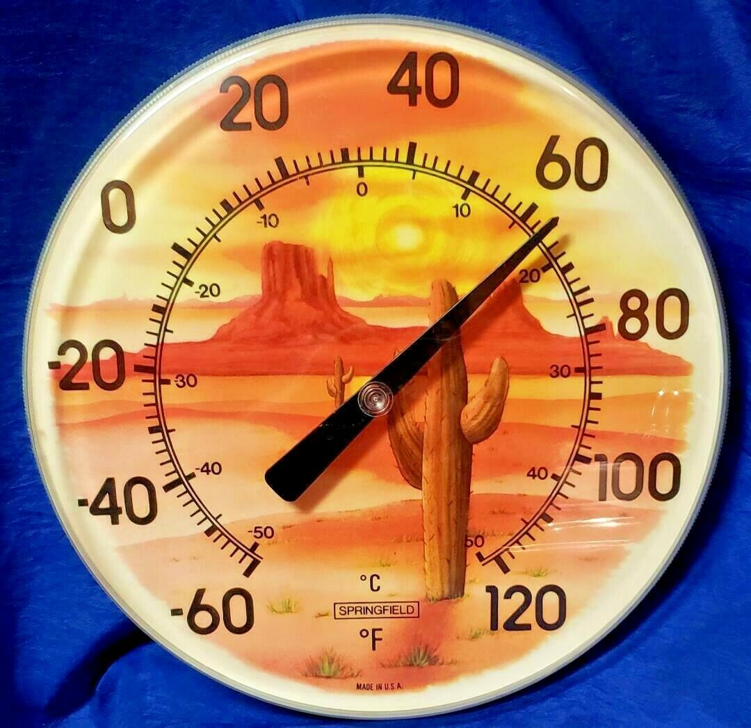 """Vintage SPRINGFIELD 12"""" Indoor Outdoor Thermometer Made in USA Desert Cactus"""