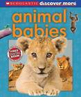 Scholastic Discover More: Animal Babies by Andrea Pinnington (Hardback)