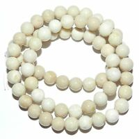 """GR517f Natural Creamy White 6mm Round Riverstone Coral Fossil Gemstone Beads 16"""""""