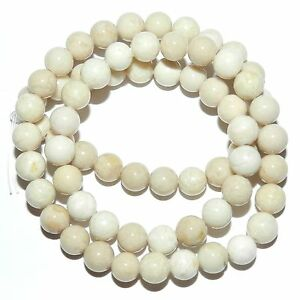 GR517-Natural-Creamy-White-6mm-Round-Riverstone-Coral-Fossil-Gemstone-Beads-16-034