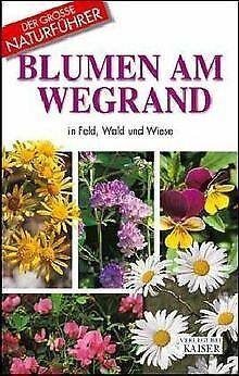 Blumen am Wegrand in Feld, Wald und Wiese von DellaBeffa...   Buch   Zustand gut