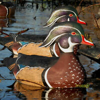 Avery Greenhead Gear Ghg Pro-grade Ls Wood Duck Decoys Weighted Keels 6