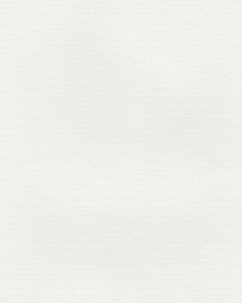 G67254 - Watercolours Plain White Galerie Wallpaper