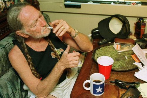 POT MARIJUANA WILLIE NELSON WEED POSTER 24 X 36 INCH SWEET