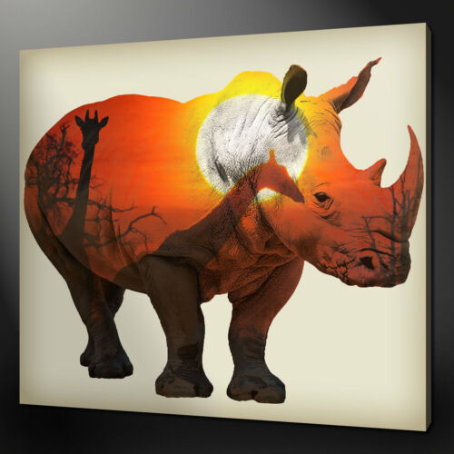 WHITE AFRICAN RHINO CANVAS PRINT PICTURE WALL ART HOME DECOR FREE FAST DELIVERY