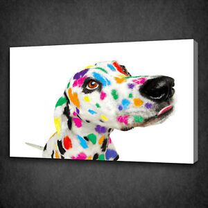 Image Is Loading FUNKY COLOURFUL DALMATIAN DOG BOX MOUNTED CANVAS PRINT