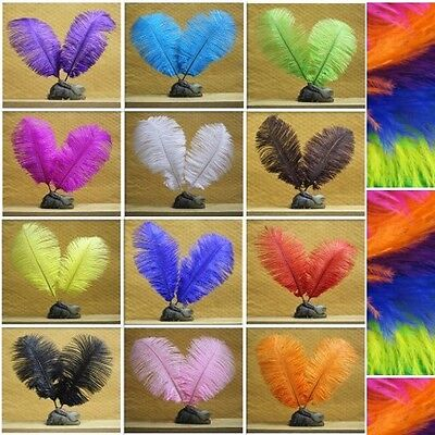 Jewelry Party Feathers Dress Decoration Natural 10pcs Ostrich Hair DIY