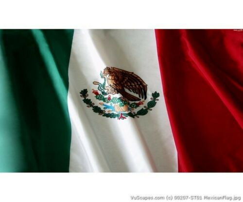 MEXICAN FLAG 4 SIZES AVIAL VuScapes Truck Rear Window Graphic