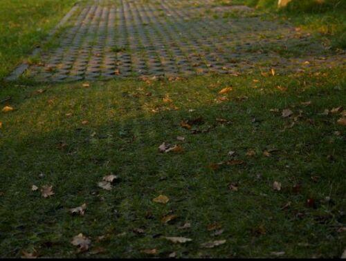 Rasengitter WEIß Kieselsteine 50x50cm Reitplatzmatten Rasenmatten Rasenwaben NEU