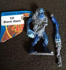 Grenadier storm giant with warhamer