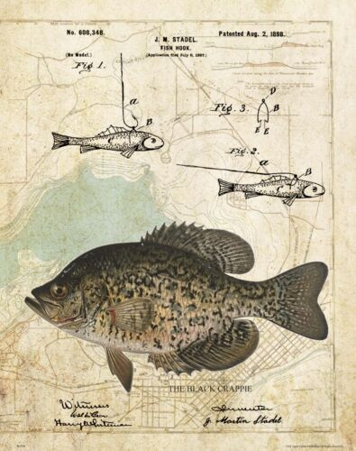 Crappie Fishing Lures Patent Art Print Masters Association Tournament Club MAP41