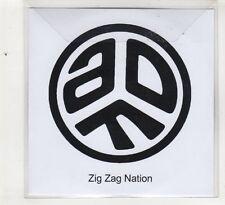 (HE287) Zig Zag Nation, Asian Dub Foundation - DJ CD