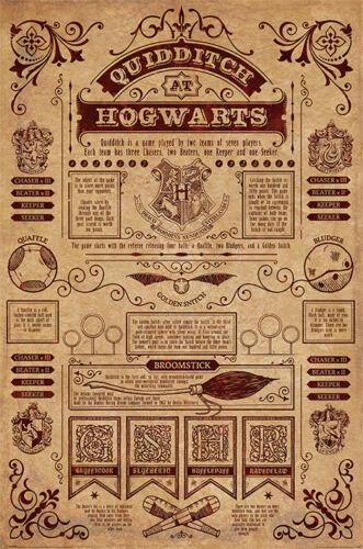 Quidditch At Hogwarts PP34067-648 Maxi Poster Harry Potter 61cm x 91.5cm