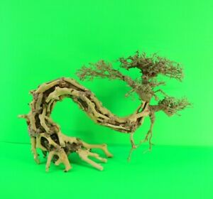 Aquarium Driftwood Bonsai Tree Aquascape Fish Planted Freshwater Z2b12 0173 Ebay